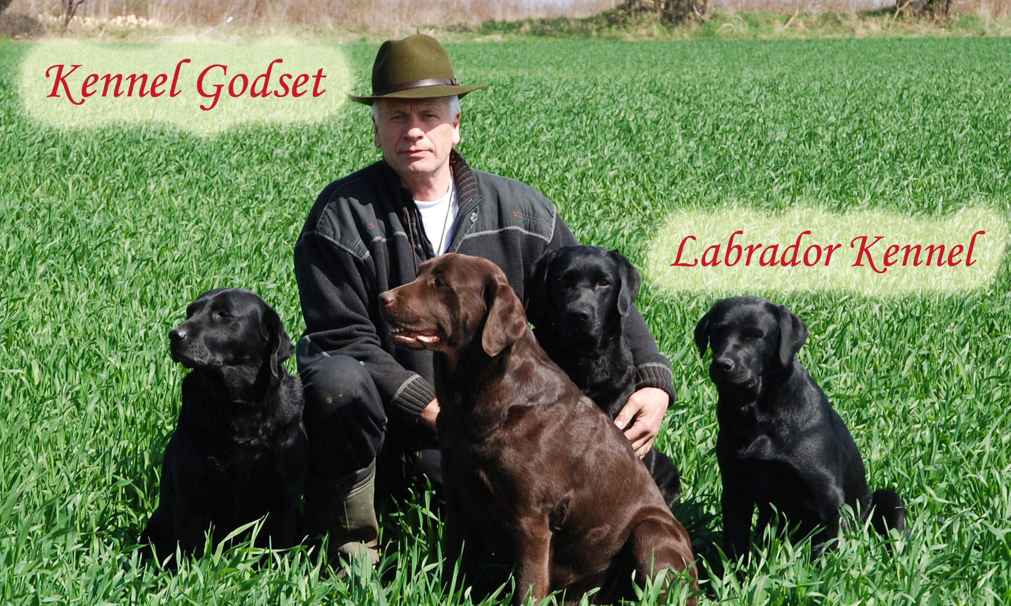 Labrador retriever Kennel Godset
